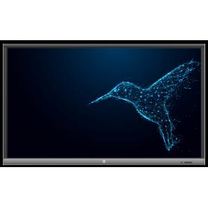 "Avtek TouchScreen 5 Lite 75 monitor interaktywny 75"" - 2"